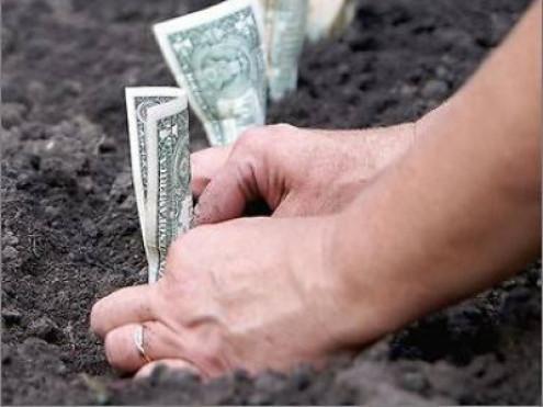 Два гектари землі на Рівненській оцінюють у близько мільйона доларів.