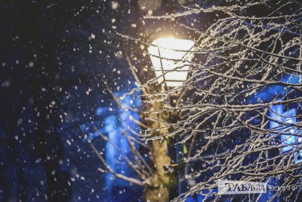 Засніжене дерево в місті