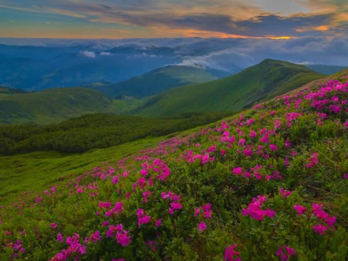 Світанок у горах