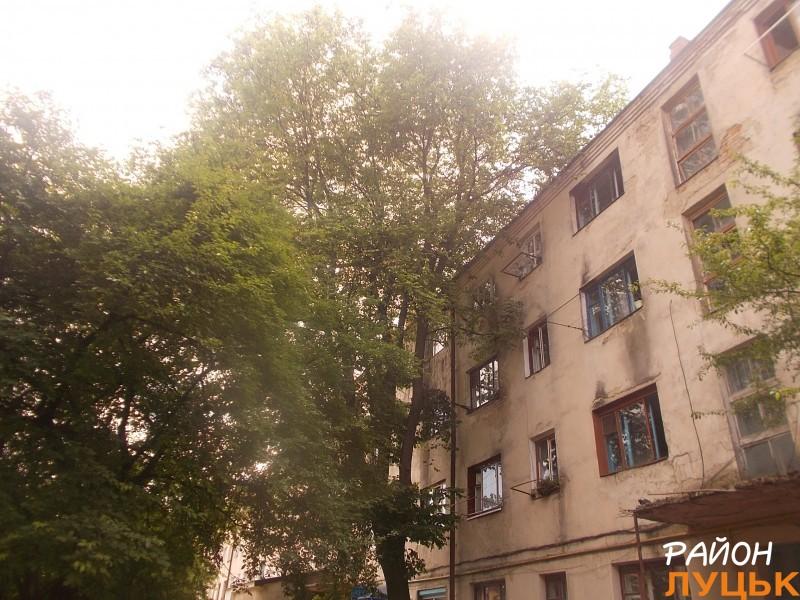 Поблизу будинку велике дерево, яке, за словами, мешканців, потрібно давно зрізати, тому що воно впаде на будинок і це становить небезпеку.