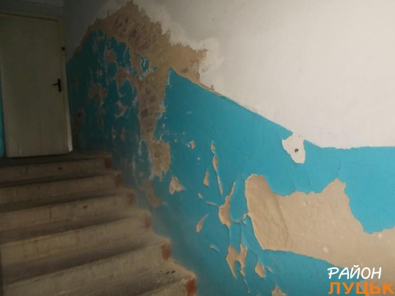 Обдерті стіни, вкриті грибоподібною речовиною