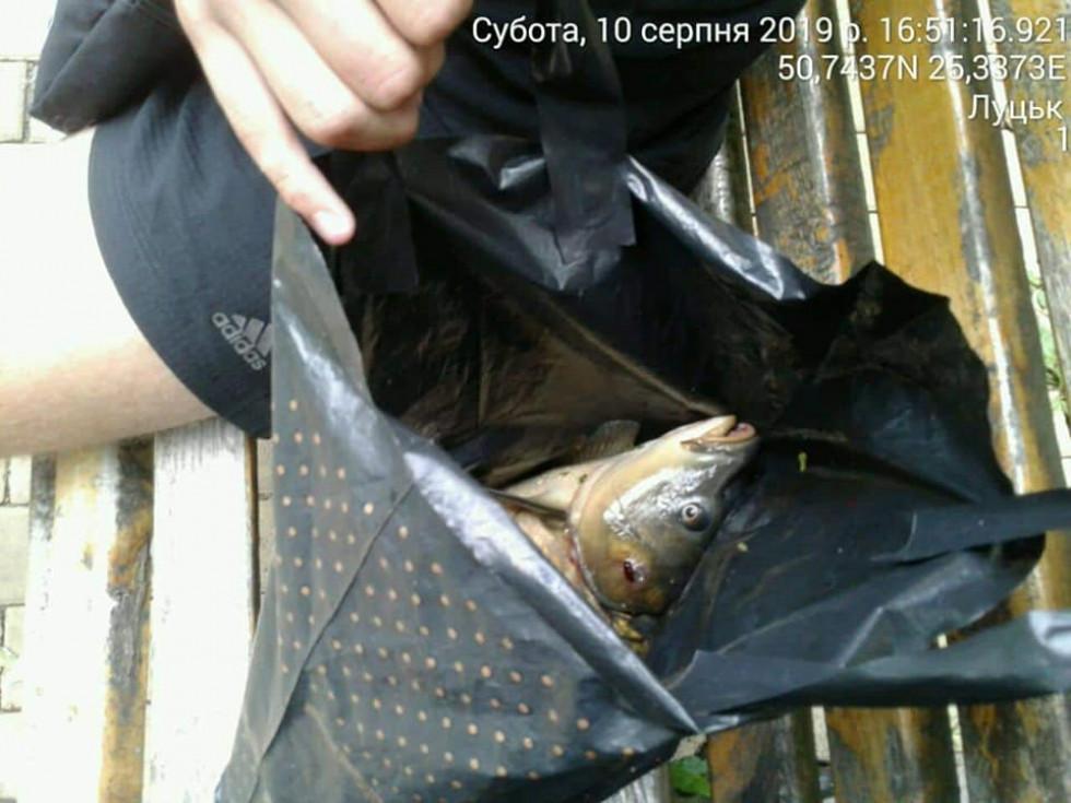 Незаконо виловлена риба