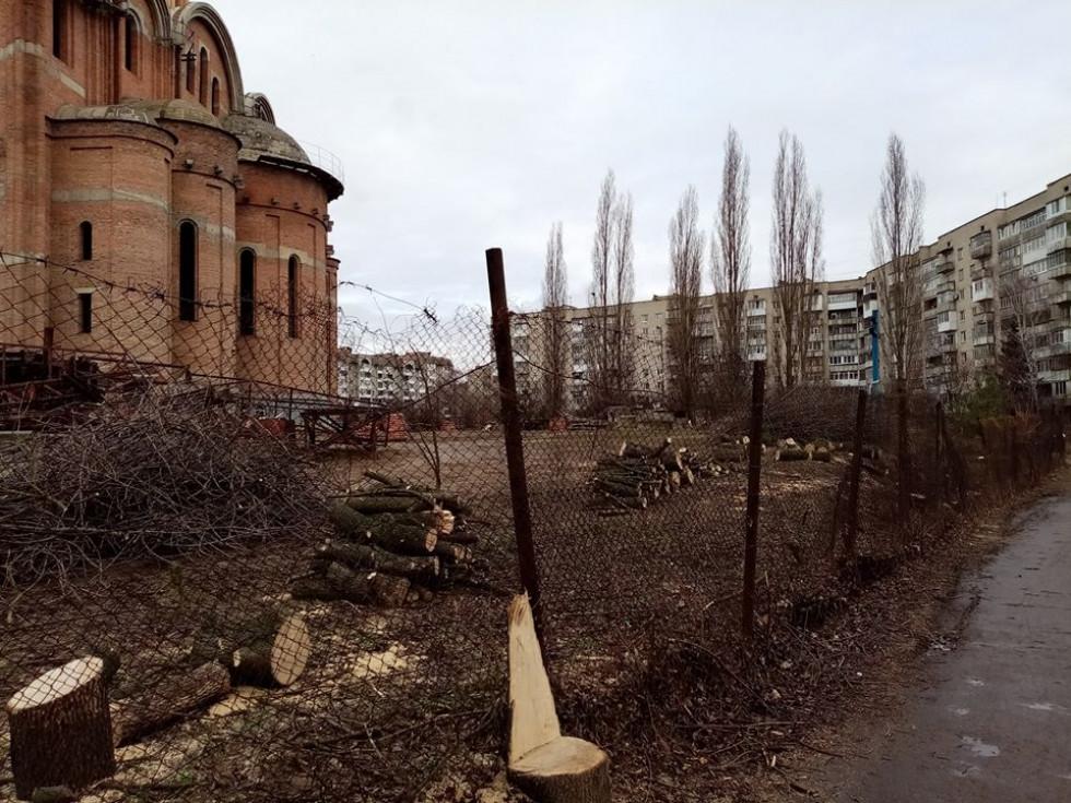 На Чорновола у Луцьку зрізали дерева