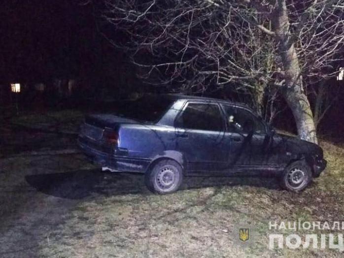 В Охотині п'яний водій збив перехожу