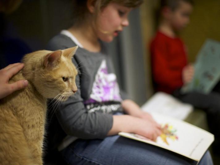 Волинська бібліотека для юнацтва робить цінні дарунки за фото