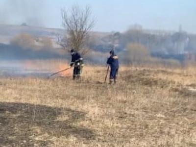 Пожежу сухостою у Заборолі пожежники гасили швабрами