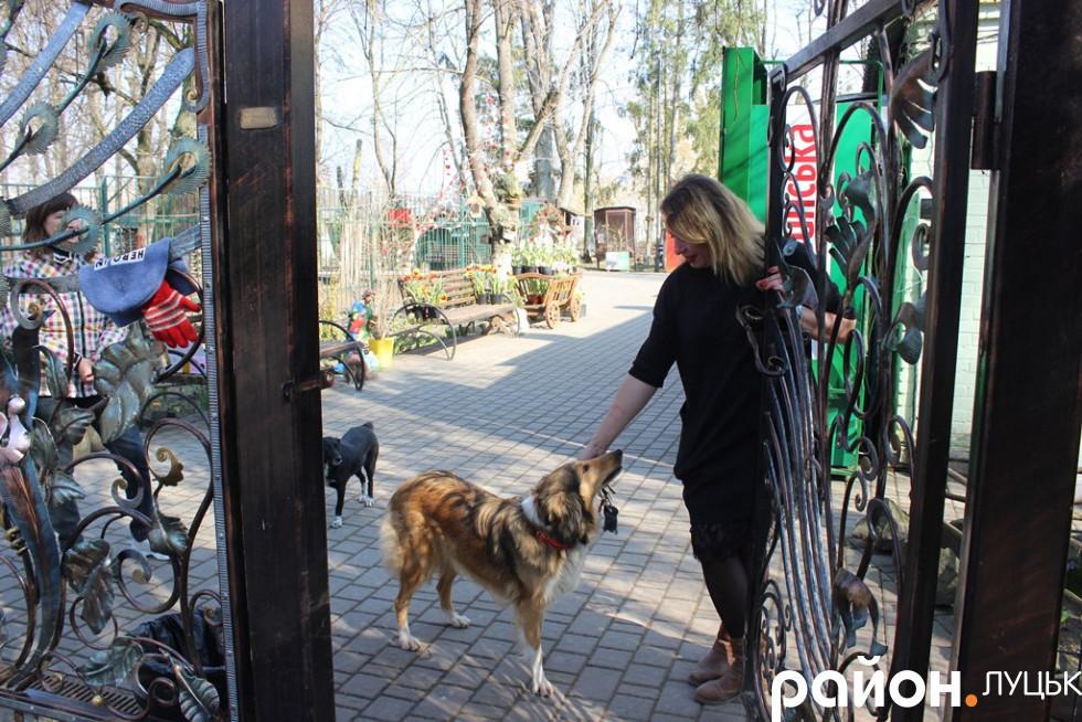 Людмила Денисенко і її собака Дора