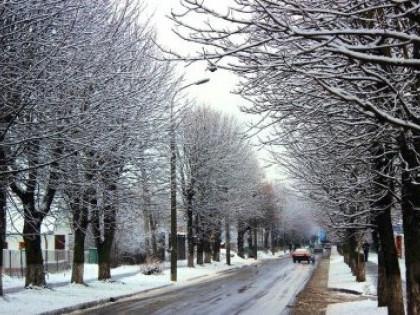 Зима не настала несподівано: перший сніг у Луцьку приборкувала спецтехніка