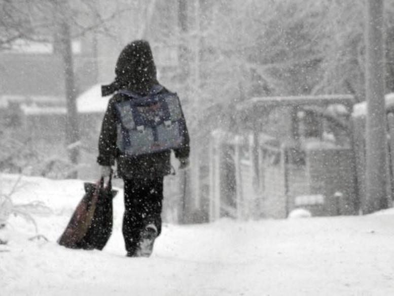 Через сильні морози луцькі школярі можуть навчатися з дому
