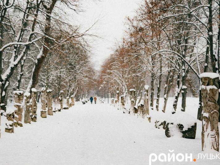 Центральний парк взимку