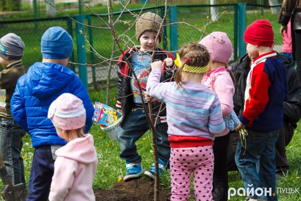 """Вишневий сад у дитсадку """"Радість"""" (ФОТО), фото-12"""