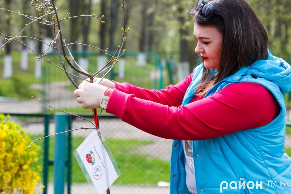 """Вишневий сад у дитсадку """"Радість"""" (ФОТО), фото-13"""