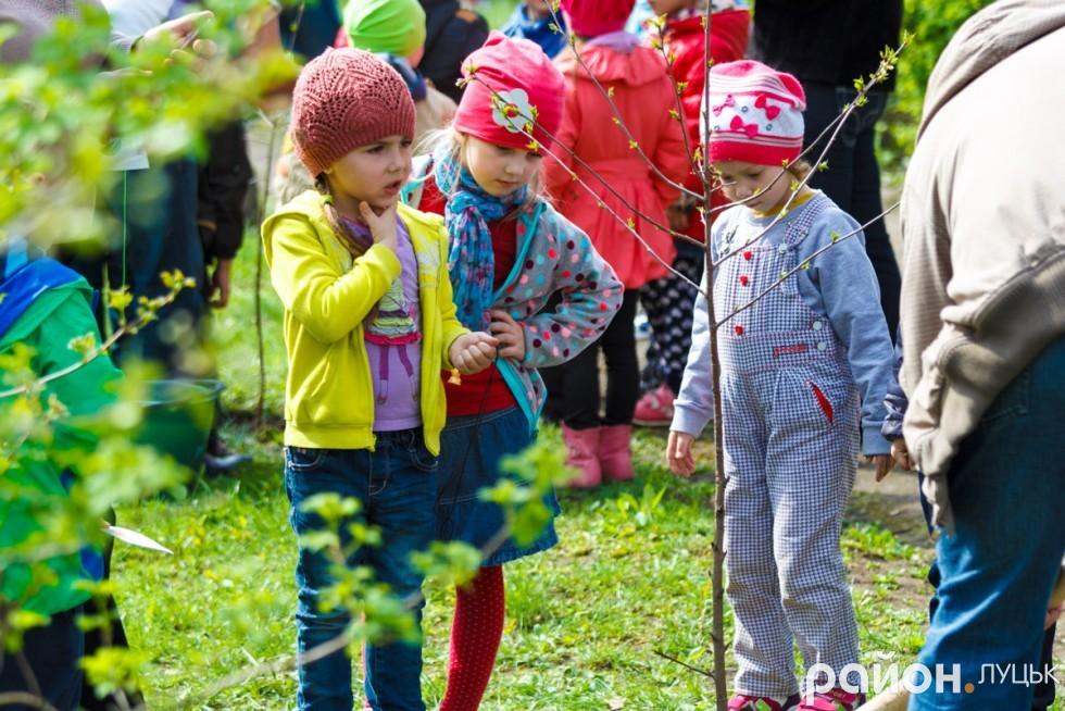 """Вишневий сад у дитсадку """"Радість"""" (ФОТО), фото-19"""