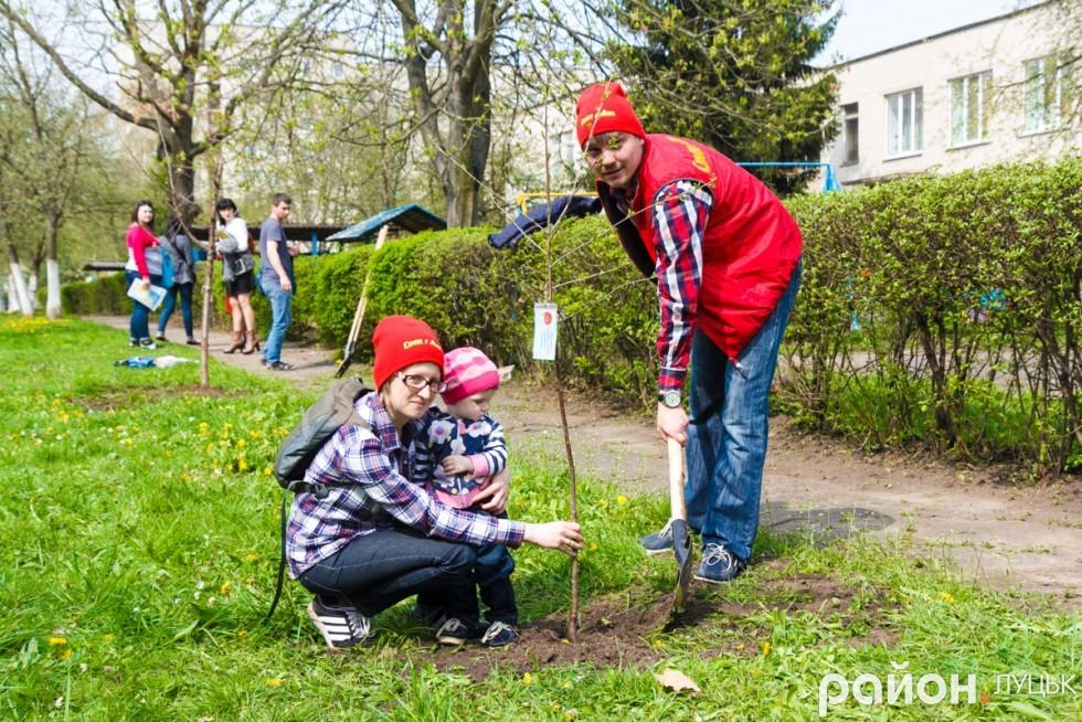 """Вишневий сад у дитсадку """"Радість"""" (ФОТО), фото-30"""