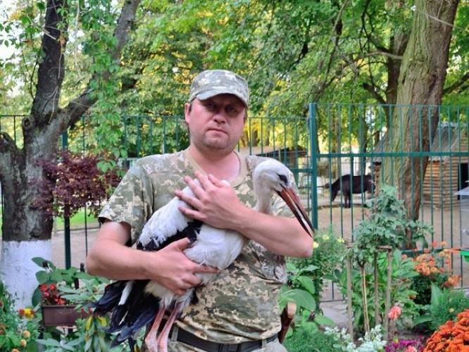 Фото прес-служби Волинського обласного управління лісового та мисливського господарства