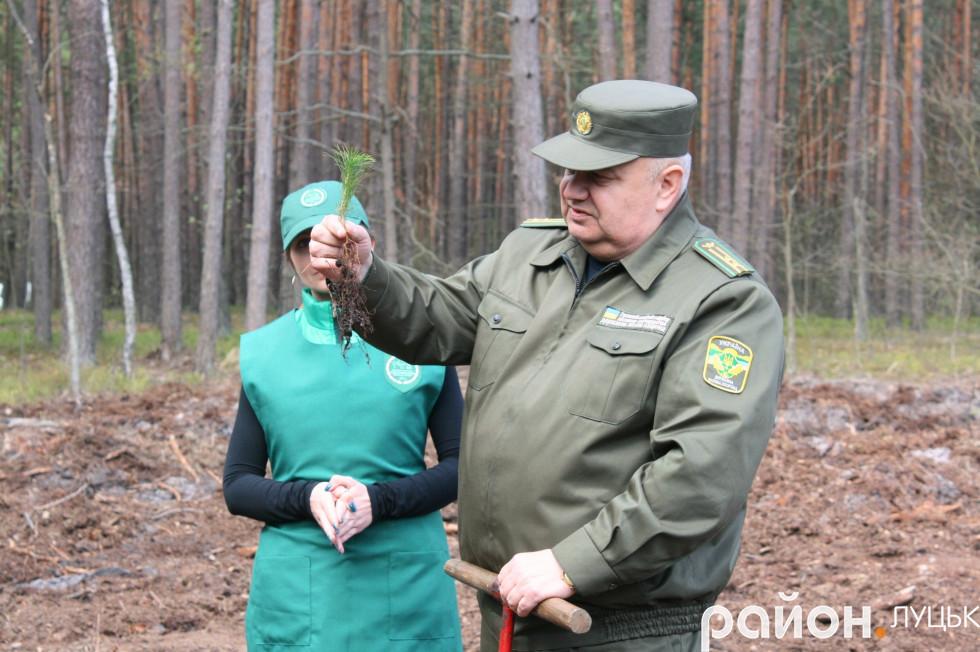 Головний спеціаліст відділу лісового господарства Володимир Неводнічик показує журналістам,  як правильно садити дерева