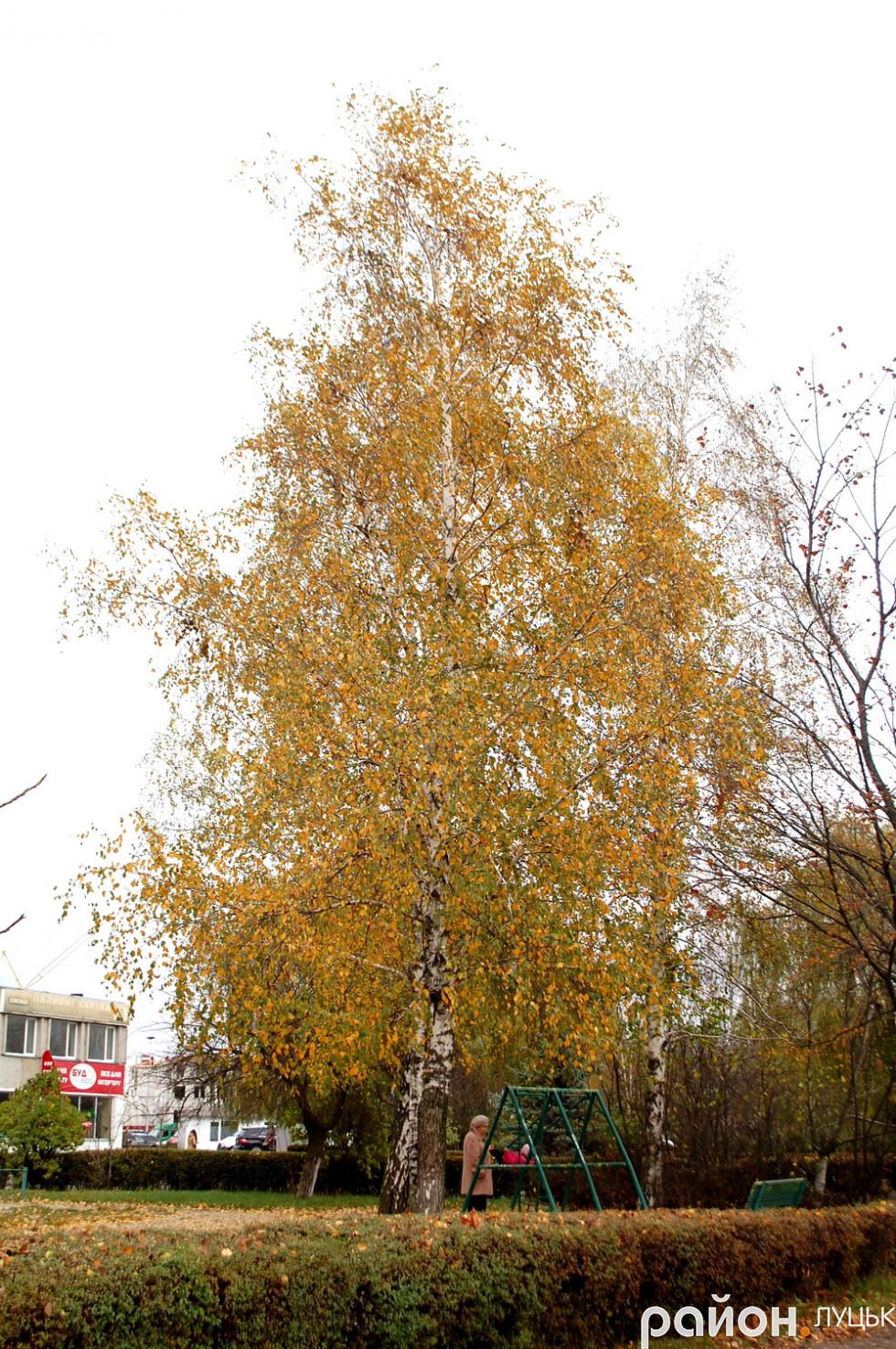 Вулиця Єршова