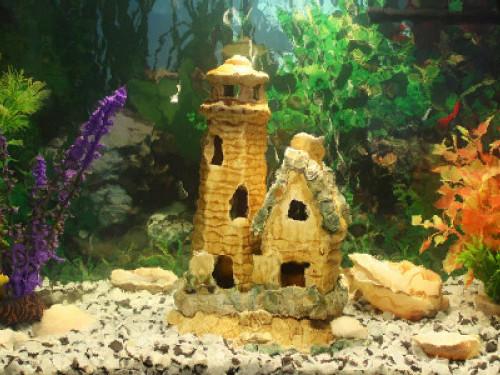 Дизайнерський акваріум