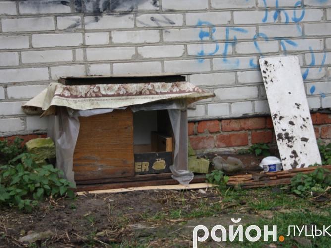 Власноруч збудована будка в дворі