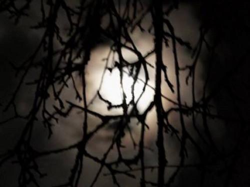 Таємничий місяць на світлинах фотографа