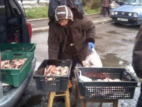 торгували рибою сумнівної якості