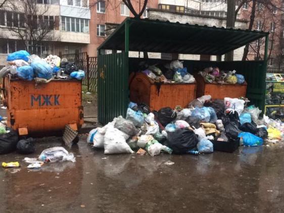 Комунальники «забули» про сміття