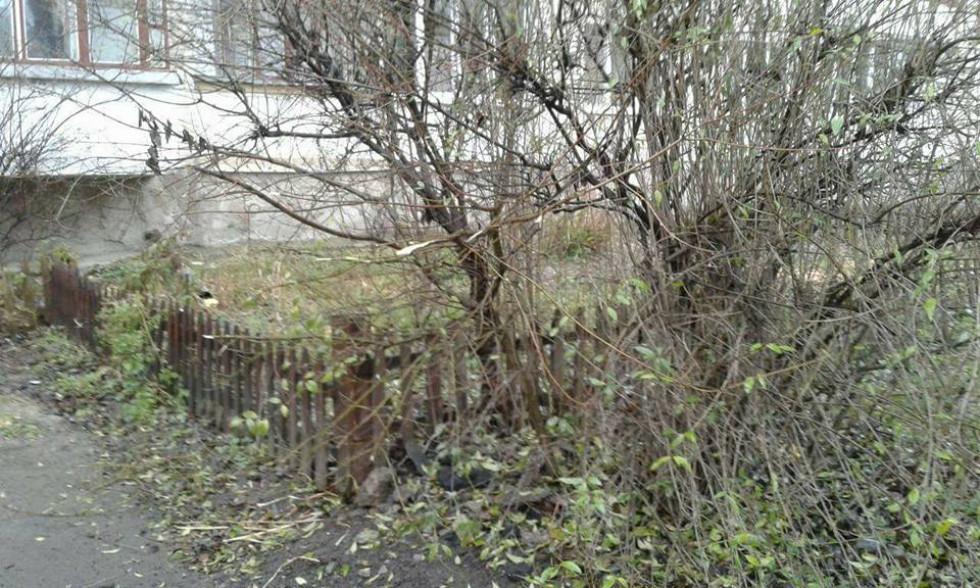 Прибрали з дев'яти грядок паркани, які встановили самі мешканці