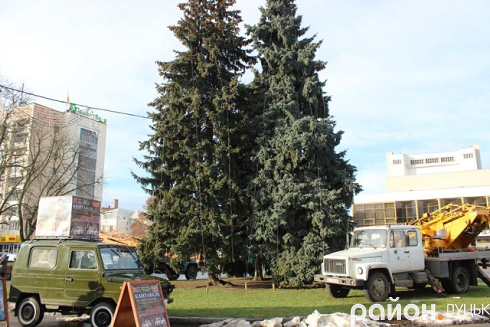 Прикрашання святкових дерев обійдеться місту в 100 тисяч нривень