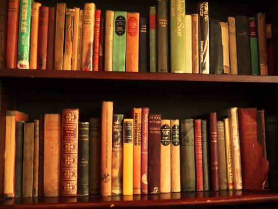 Рукописи книг