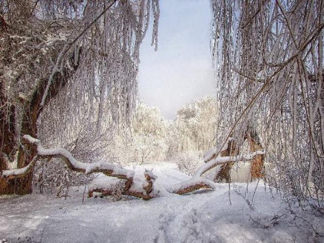 Зимова магія луцької річки