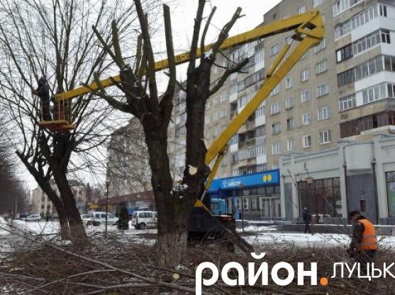 На Дубнівській кронують дерева
