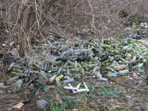 За гори сміття треба штрафувати!