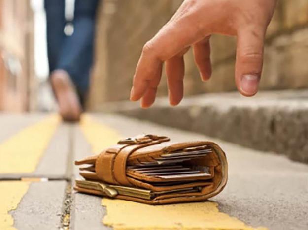 Двоє молодиків схопили гаманець і втекли