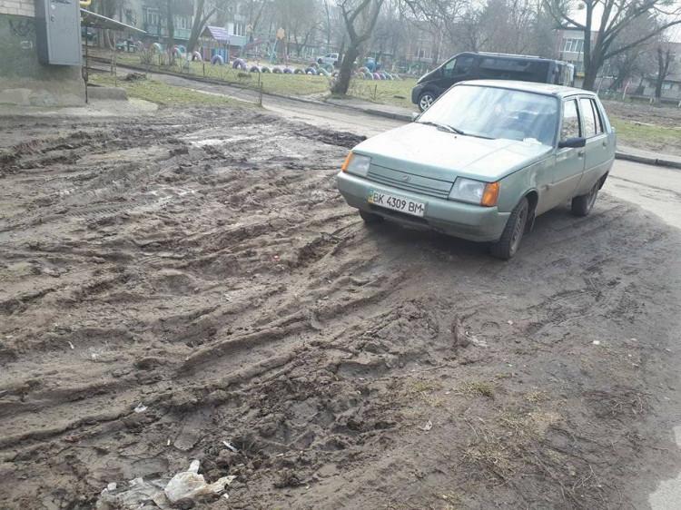 Автомобілісти завдають газонам величечної шкоди