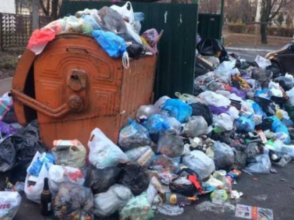 Лучани підкинули сміття в чужі контейнери