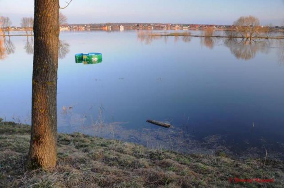 Самотнє дерево і неприборкана річка, що вийшла з берегів