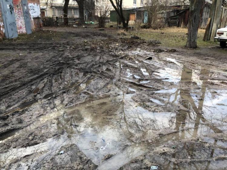 Прибудинкова територія у Луцьку