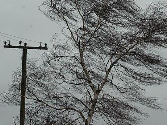 Через негоду в деяких селах Луцького району нема світла