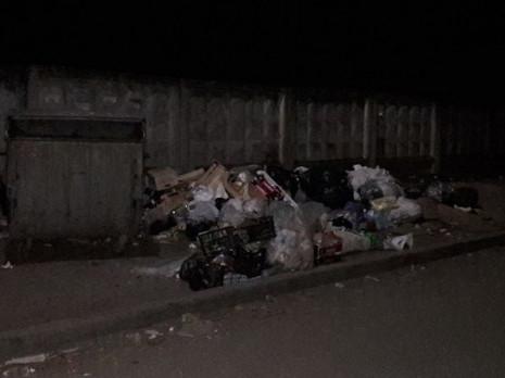 Біля замку Любарта – гори сміття