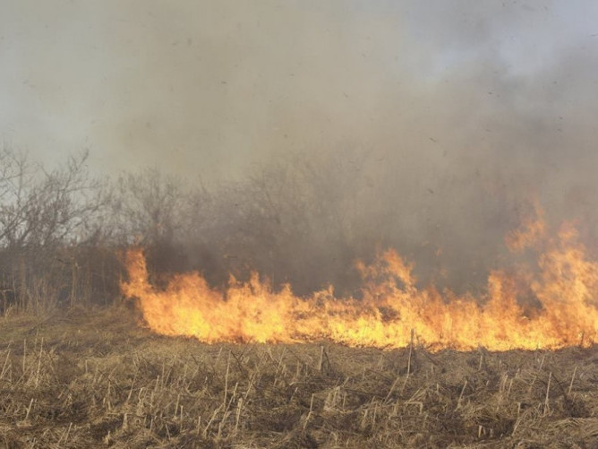 Пожежу спричинило необережне поводження з вогнем