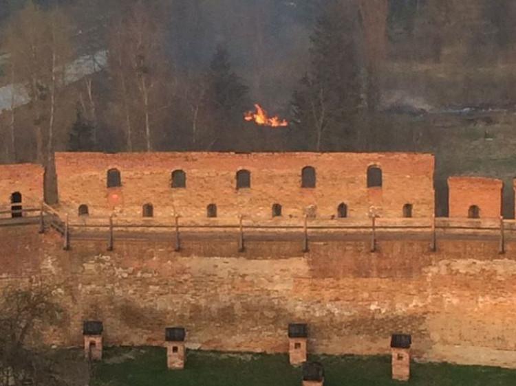 У Луцьку горить парк