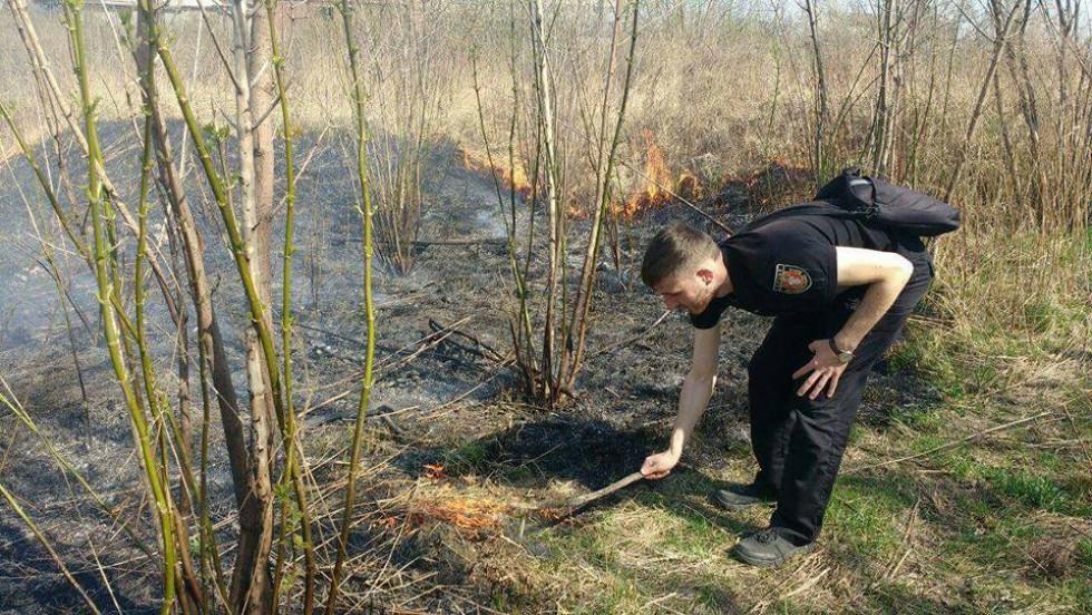 Загорілась суха трава, кущі й дерева