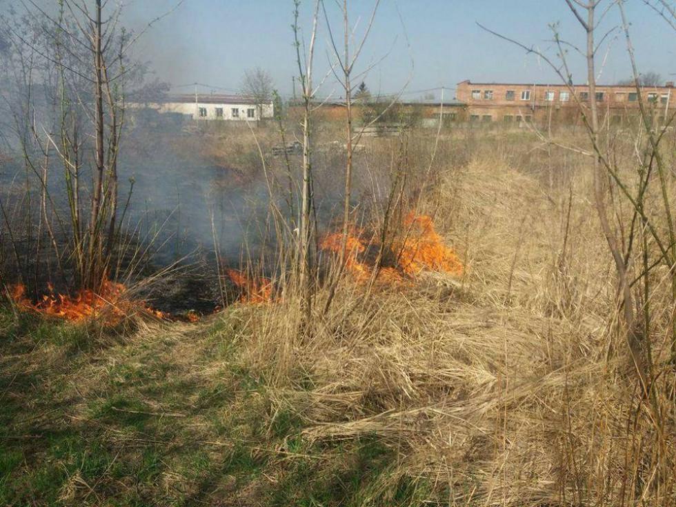 Вогонь розкинувся на чималу територію