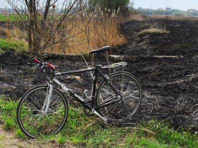 Спалили заповідник «Гнідавське болото»