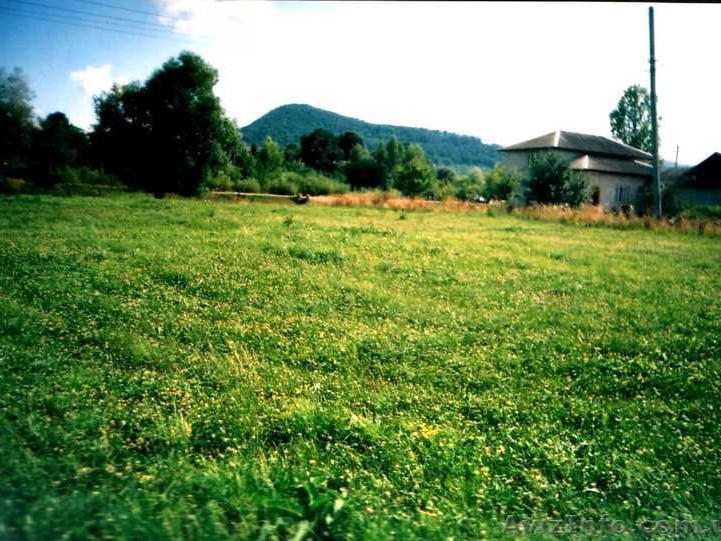 Підприємство «Амур»повернедержаві земельну ділянку