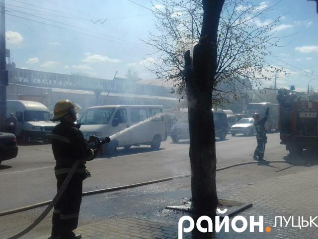 Роми підпалили дерево