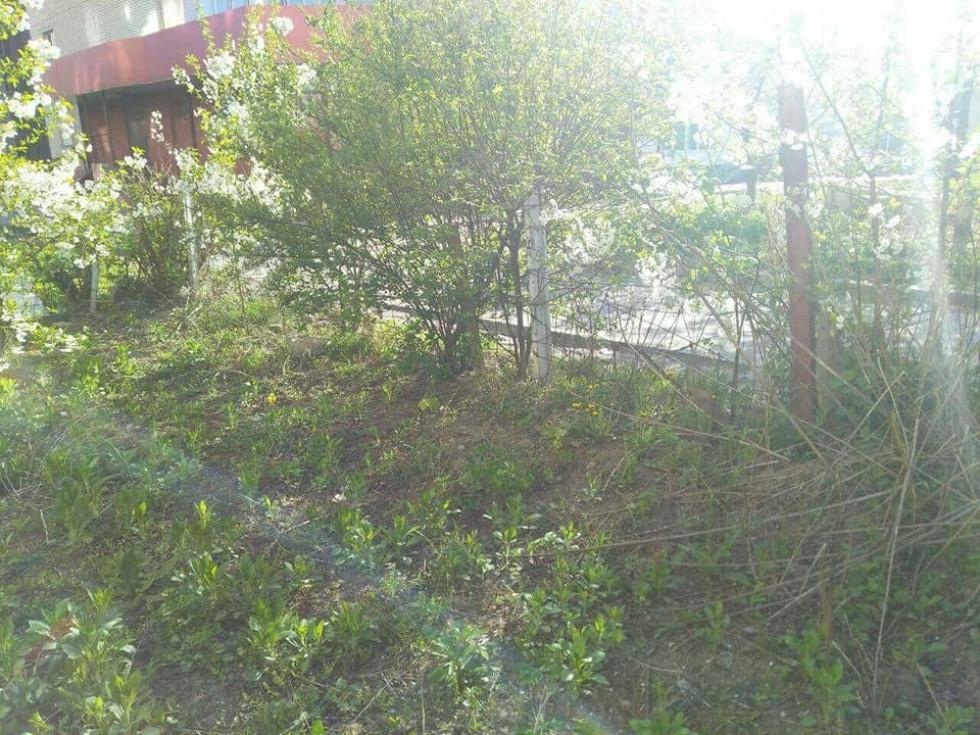 Муніципали вкотре демонтують гнилі дерев'яні та іржаві огорожі в Луцьку