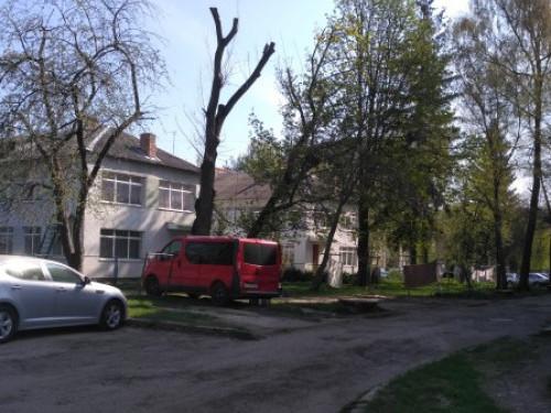 Двір на вулиці Степана Бандери