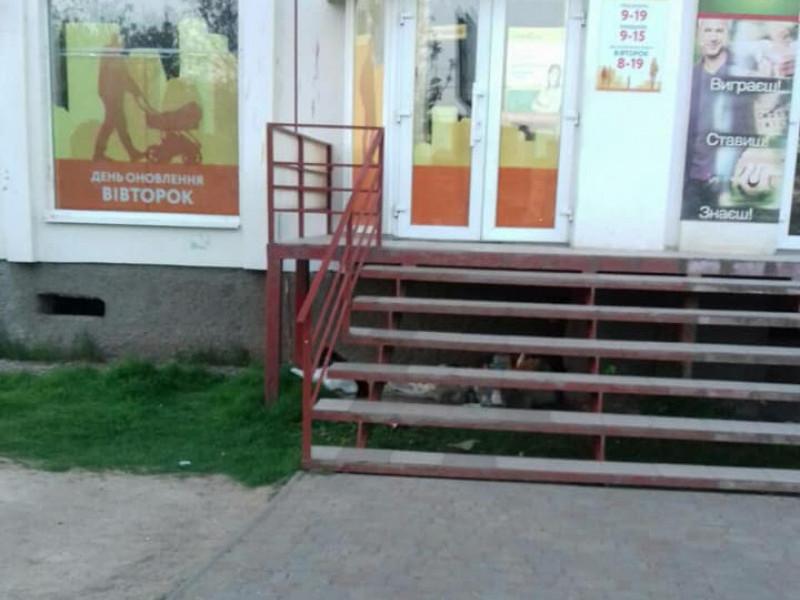 Сходи стали домівкою...