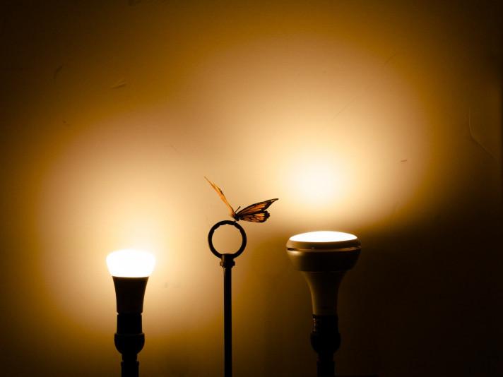 На трьох вулицях Луцька вимкнуть світло